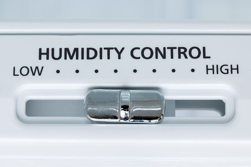 What's the Best Way to Control Humidity in Your Home?